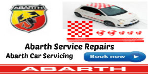 Abarth Car Servicing